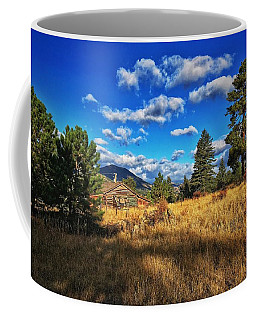 Coffee Mug featuring the photograph Abandoned Cabin by Dan Miller