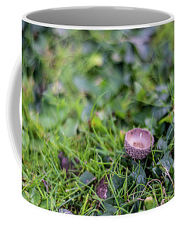 Coffee Mug featuring the photograph Acorn Cup On Grass by Scott Lyons