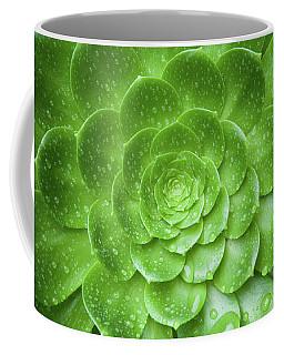 Aenomium 3916 Coffee Mug