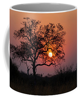 Coffee Mug featuring the photograph Africa Sunset by John Rodrigues