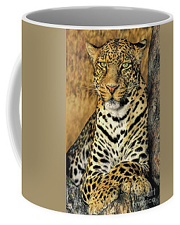 Coffee Mug featuring the photograph African Leopard Portrait Wildlife Rescue by Dave Welling
