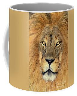 African Lion Portrait Wildlife Rescue Coffee Mug
