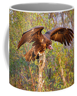 Coffee Mug featuring the photograph African Vulture by John Rodrigues