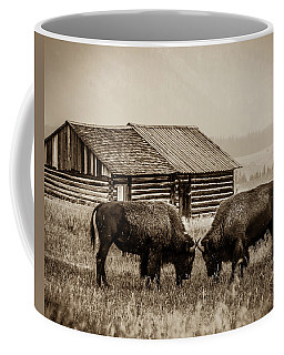Coffee Mug featuring the photograph Age Old Conflict by Mary Hone