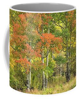 All Autumn Colors Coffee Mug