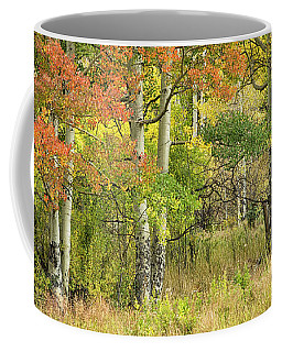 All Autumn Colors Coffee Mug