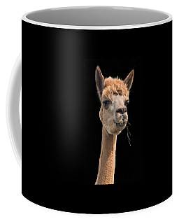 Alpaca Head Coffee Mug