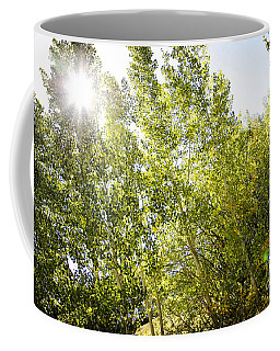 Alpine Sunlight In The Rockies Coffee Mug