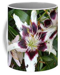 Amazing Lily Coffee Mug