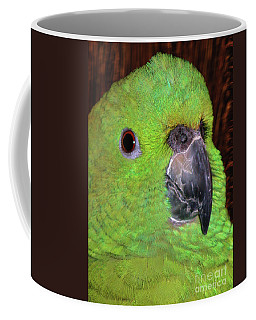 Coffee Mug featuring the photograph Amazon Parrot by Debbie Stahre
