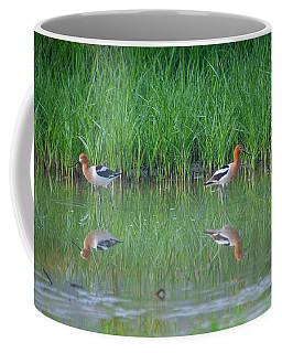 American Avocet Pair Coffee Mug