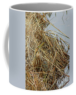 Coffee Mug featuring the photograph American Bittern by Debbie Stahre
