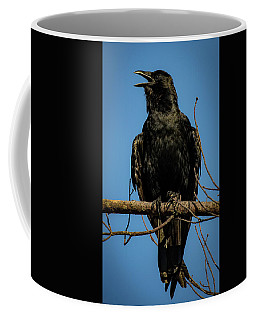 Coffee Mug featuring the photograph American Crow by Lora J Wilson
