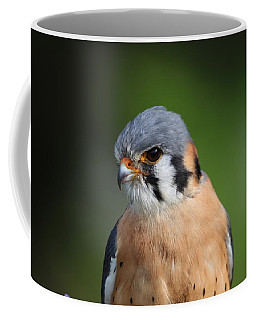 American Kestrel 5151801 Coffee Mug