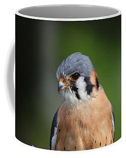 Coffee Mug featuring the photograph American Kestrel 5151801 by Rick Veldman