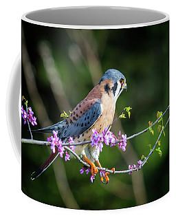 Coffee Mug featuring the photograph American Kestrel 5151804 by Rick Veldman