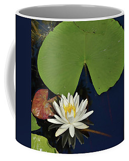 American Water Lily-square Coffee Mug