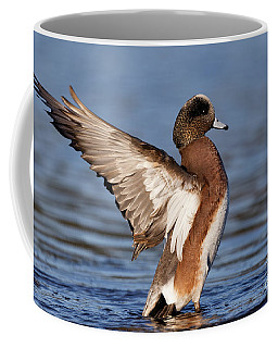 American Wigeon Delight Coffee Mug