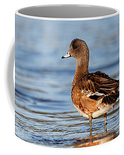 American Wigeon Standing Alert Coffee Mug