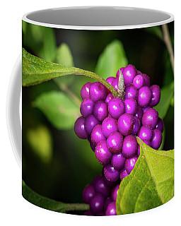 An American Beauty Coffee Mug
