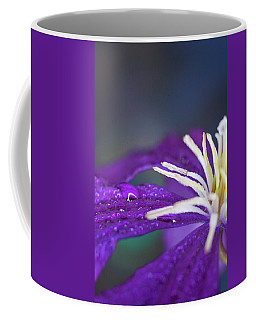 Coffee Mug featuring the photograph Ancient Joy by Michelle Wermuth