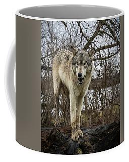 Anit I Pretty Coffee Mug