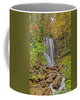 Anna Ruby Falls Left Coffee Mug