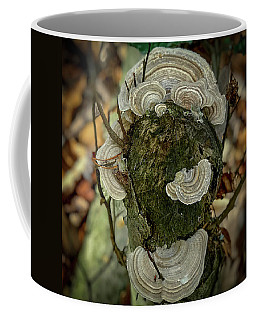 Coffee Mug featuring the photograph Another Fungus by Lora J Wilson