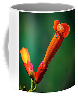 Ant Got Time For Trumpet Vine Coffee Mug
