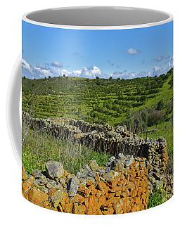 Antique Stone Wall Of An Old Farm Coffee Mug