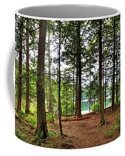 Coffee Mug featuring the photograph Approaching Sis Lake by David Patterson