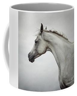 Coffee Mug featuring the photograph Arabian Horse Portrait by Dimitar Hristov