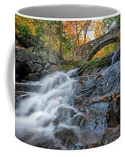 Coffee Mug featuring the photograph Arch Bridge At Vaughan Woods by Rick Berk