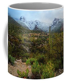 Arizona Winter Light Coffee Mug
