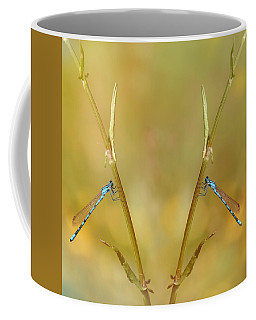 Coffee Mug featuring the photograph Around The Meadow 6 by Jaroslav Buna