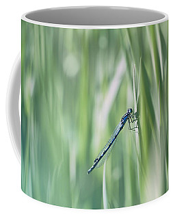 Coffee Mug featuring the photograph Around The Meadow 8 by Jaroslav Buna