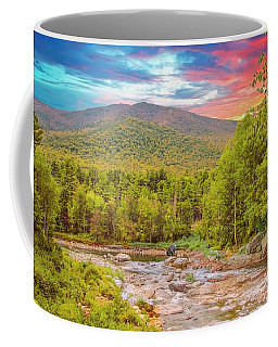 Art Landscape,adirondack Park.                                Coffee Mug
