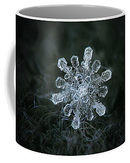 Coffee Mug featuring the photograph Real Snowflake - 04-feb-2018 - 1 by Alexey Kljatov