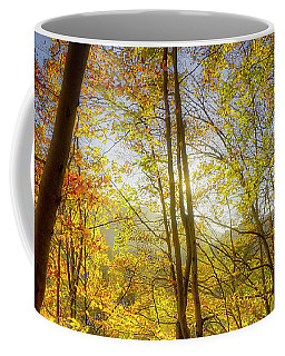 Coffee Mug featuring the photograph As The Leaves Turn  by Edmund Nagele