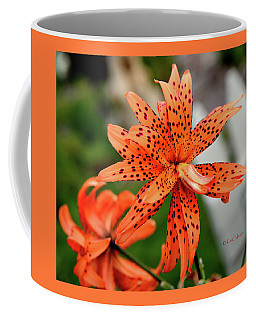 Asian Tiger Lily Coffee Mug