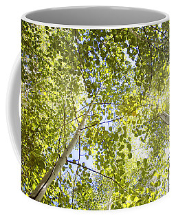 Aspen Canopy With Sun Flare Coffee Mug