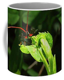 Assassin Bug Coffee Mug
