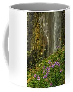Asters And Comets Coffee Mug