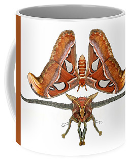 Atlas Moth5 Coffee Mug