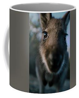 Australian Bush Wallaby Outside During The Day. Coffee Mug