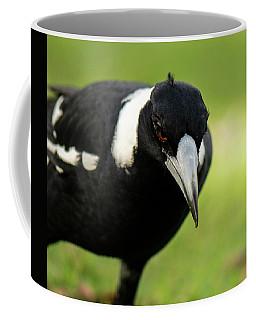 Australian Magpie Outdoors Coffee Mug