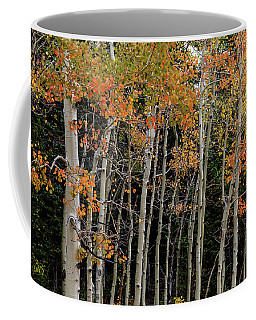 Coffee Mug featuring the photograph Autumn As The Seasons Change by James BO Insogna