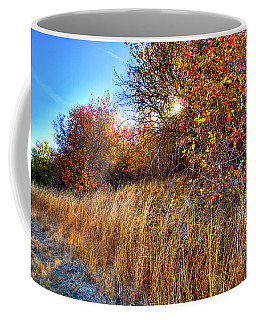 Coffee Mug featuring the photograph Autumn At Magpie Forest by David Patterson