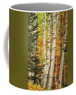 Autumn Birch Coffee Mug