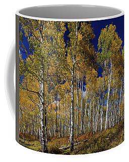 Coffee Mug featuring the photograph Autumn Blue Skies by James BO Insogna